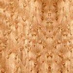 Bird's Eye Maple wood