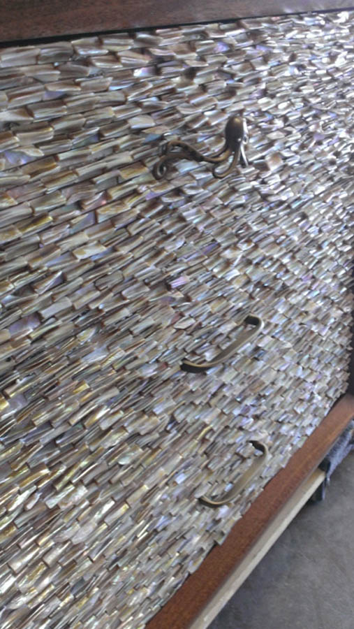 Close up photo of the sea shell front
